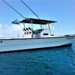 Makaira Resort Taveuni Deep Sea Fishing Charters - Sea Afare (8)