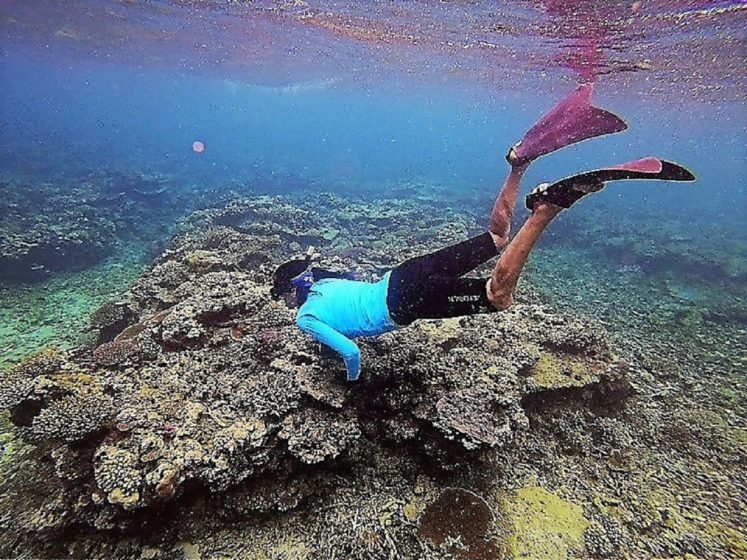 Coral Reef Conservation on Taveuni Island, Fiji